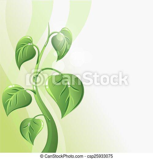 El brote verde con hojas y espacio de copia para su texto - csp25933075
