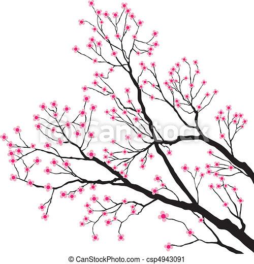 cor-de-rosa, árvore, flores, ramos - csp4943091