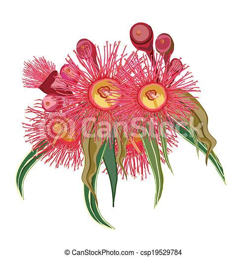 cor-de-rosa, eucalipto, flores, grupo - csp19529784