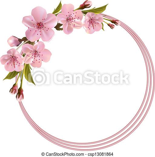 cor-de-rosa, flores mola, fundo, cereja - csp13081864