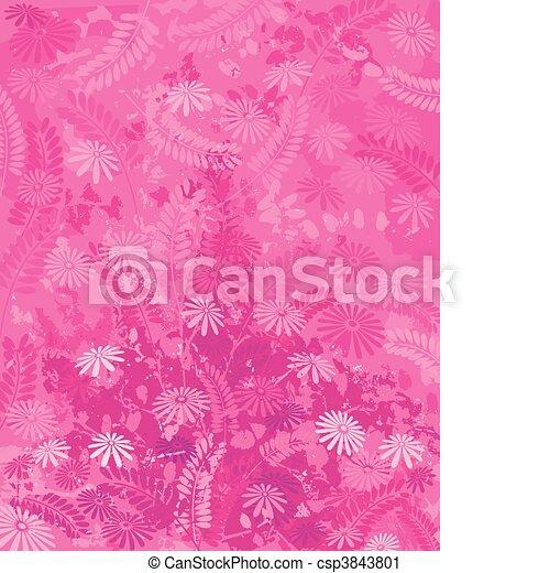 cor-de-rosa, natureza - csp3843801