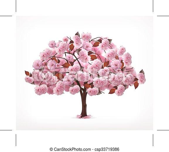cor-de-rosa, primavera, árvore - csp33719386