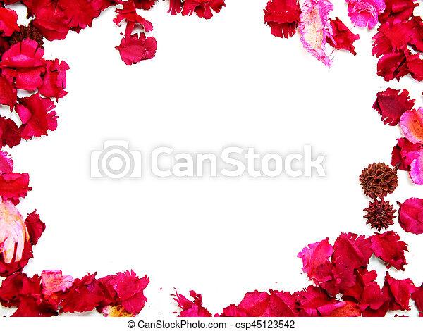 cor de rosa quadro fundo flores brancas borda csp45123542
