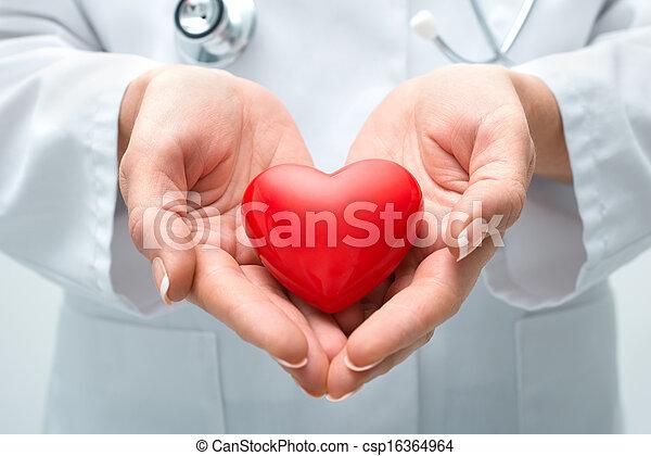 coração, segurando, doutor - csp16364964