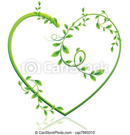coração, verde - csp7993310