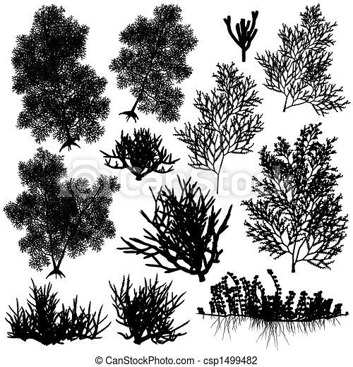 coral, elementos - csp1499482