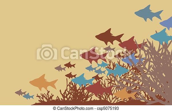 Coral fish - csp5075193