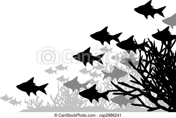 Coral fish - csp2986241