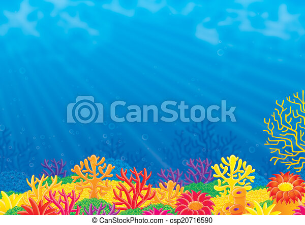 coral reef colorful coral reef and blue water of a tropical sea