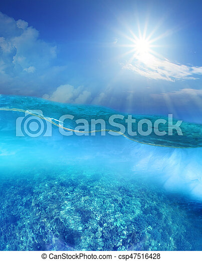 coral reef under deep blue sea water and sun shining over sky - csp47516428