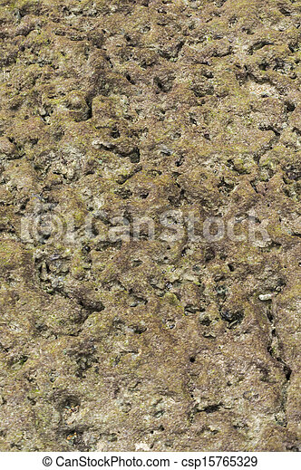 Textura coral - csp15765329