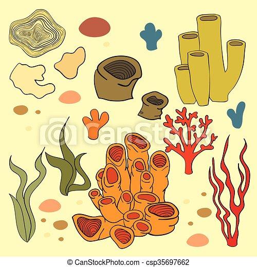 Coralli Vettore Isolato Alghe Coralli Alghe Vettore Isolato