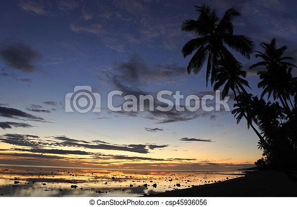 corallo, costa, tramonto, figi, paesaggio, vista - csp45936056