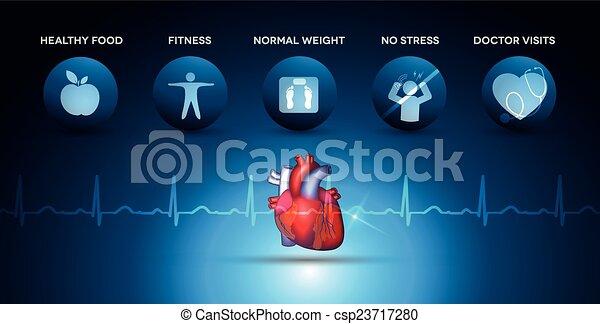 corazón, cardiología, iconos, anatomía, asistencia médica - csp23717280
