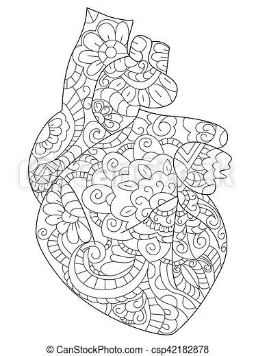 Corazón, colorido, adultos, anatómico, vector, libro. Corazón ...