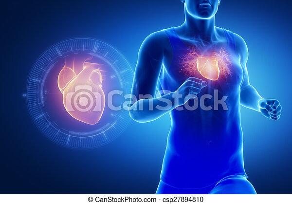 El corredor se centra en el corazón - csp27894810
