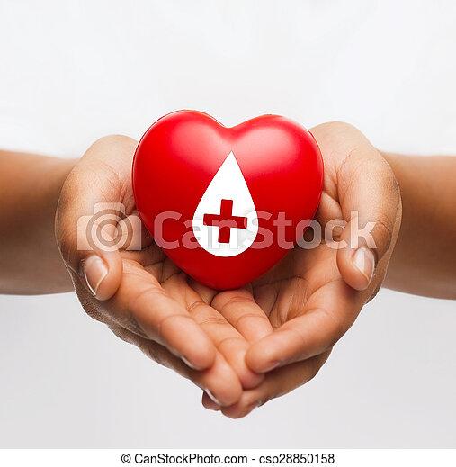 Manos femeninas sosteniendo el corazón rojo con signo de donante - csp28850158