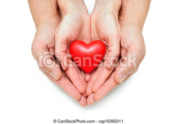 Corazón, manos humanas. Corazón, aislado, manos humanas ...