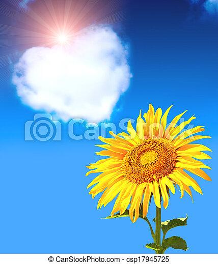 Corazón de nubes y girasol - csp17945725