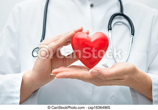 Doctor sosteniendo el corazón - csp16364965