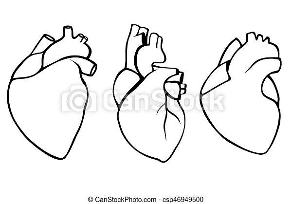 Corazones Conjunto Humano Hearts Conjunto Arte Humano
