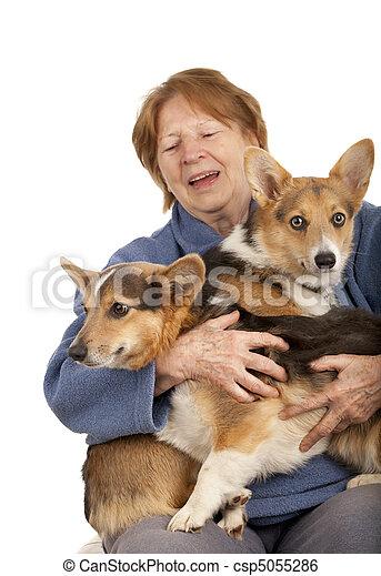 corgi, personne agee, dame, elle, chiots - csp5055286