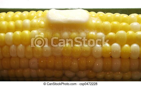 Corn 2 - csp0472228