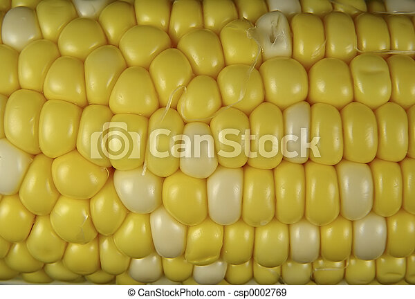 Corn 3 - csp0002769