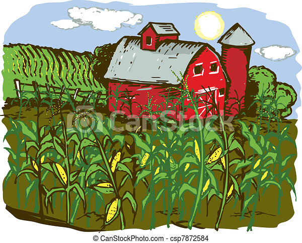 corn farm a barn with corn crops in the foreground rh canstockphoto ca Frog Clip Art Agriculture Clip Art