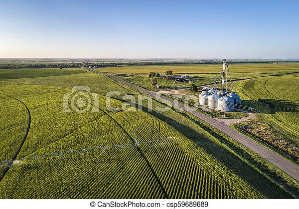 corn field aerial view - csp59689689