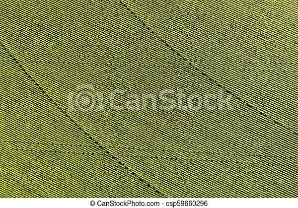 corn field aerial view - csp59660296