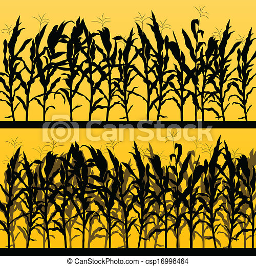 Corn field detailed countryside landscape illustration background vector - csp16998464