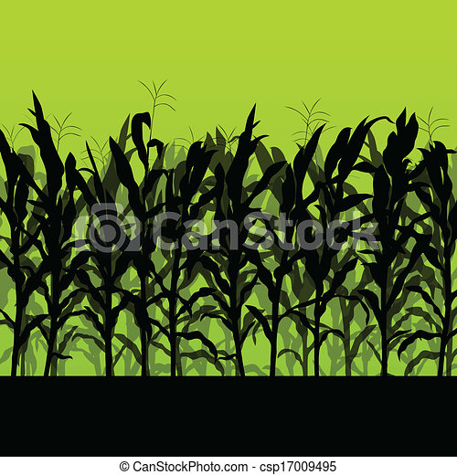 Corn field detailed countryside landscape illustration background vector - csp17009495