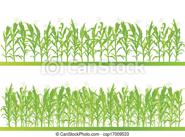 Corn field detailed countryside landscape illustration background vector - csp17009533