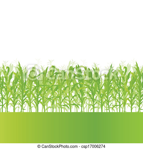 Corn field detailed countryside landscape ecology illustration background vector - csp17006274