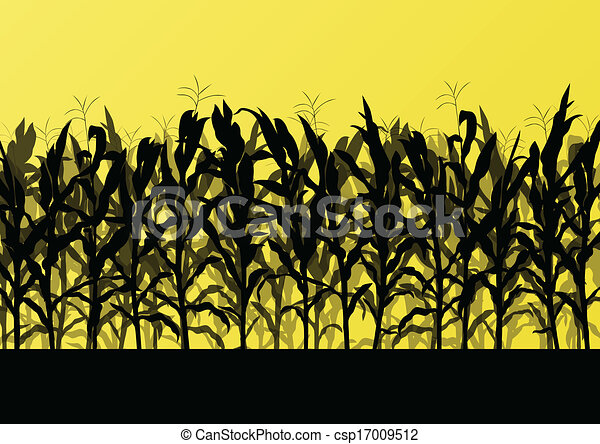 Corn field detailed countryside landscape illustration background vector - csp17009512