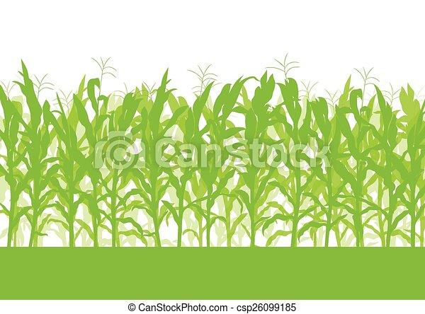 corn field vector background ecology green concept vector search rh canstockphoto com cornfield clipart free free clipart corn field