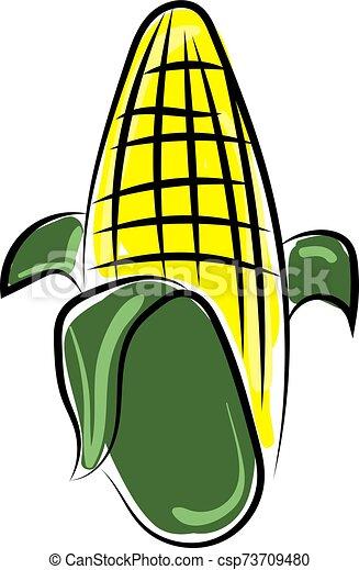 Corn, illustration, vector on white background. - csp73709480