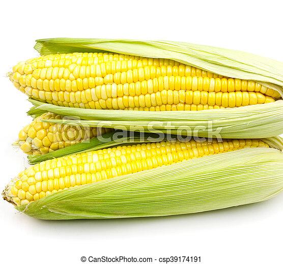 Corn on white background - csp39174191