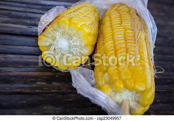 Corn - csp23049957