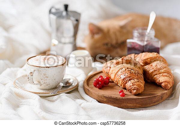 Cornetti Colazione Marmellata Letto Caffe Caffe Posa Letto Gatto Colazione Zenzero Fondo Jam Orizzontale Vista Canstock