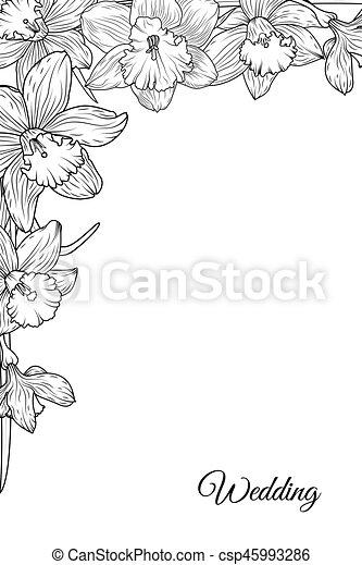 Cornice Narciso Sagoma Narciso Angolo Fiori Dettagliato
