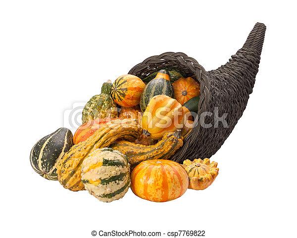 Cornucopia Gourds isolated - csp7769822
