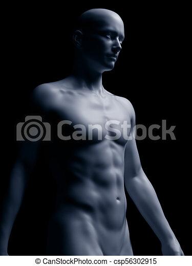 corpo, umano - csp56302915