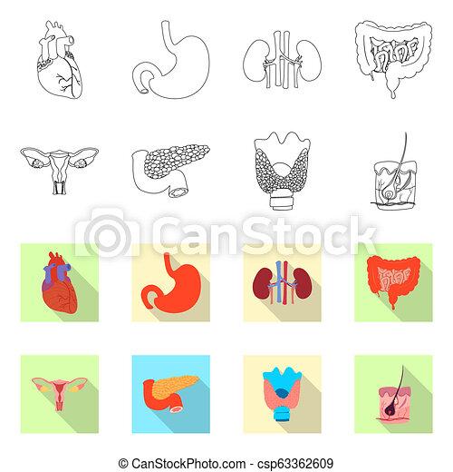 corporal, jogo, médico, web., vetorial, desenho, human, logo., símbolo, estoque - csp63362609