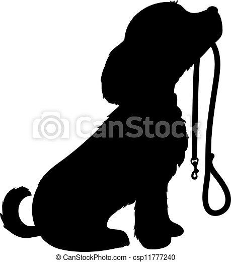 Perro y correa - csp11777240
