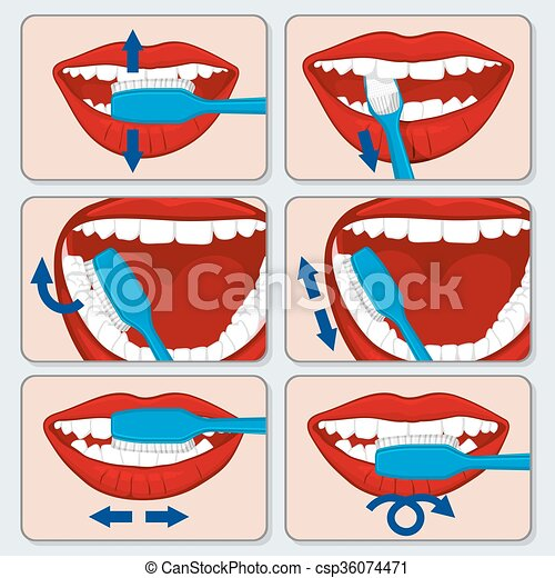 Correct tooth brushing vector infographics - csp36074471
