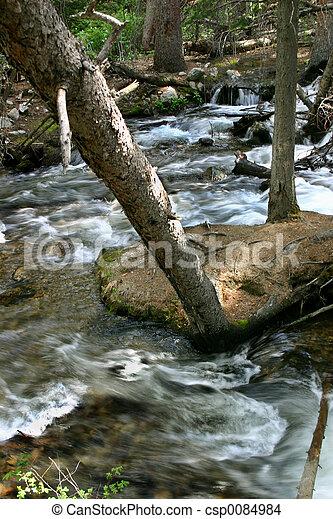 Río de montaña - csp0084984