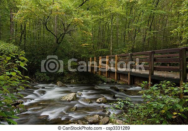 Río de montaña - csp3331289