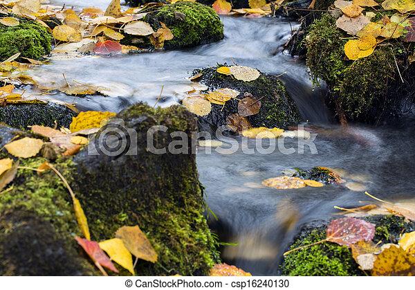 Flujo de estremecimiento entre rocas moscosas y lago - csp16240130